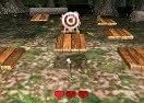 3D Archery Master