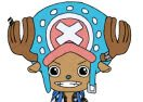 Chopper Dress Up