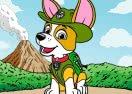 Colorir Tracker da Patrulha Canina