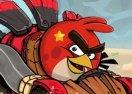 Crazy Birds Kart Hidden Stars