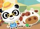 Dr Panda Farm