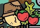 Farmers Market Match 3