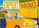 Expert Parking