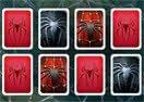 Spider-Man 3 Memory Match