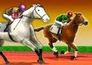Horse Derby Racing