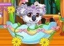 Pet Stars: Cuddly Koala
