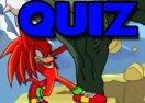 Quiz Sonic: Acha que sabe tudo sobre o Knuckles?