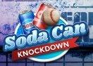 Soda Can Knockdown