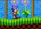 Sonic vs Camera