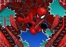 Spider-Lad Vs Batsman